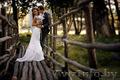 Свадебный фотограф в Жлобине