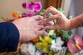 Нежные моменты Вашей свадьбы